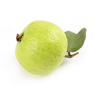 Guava Free Download Png PNG Image - PNG Guava