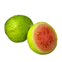 Guava Png Clipart PNG Image - PNG Guava