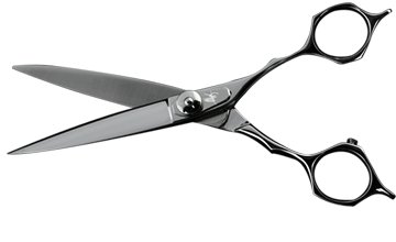 Name: ALES Dry Cutting Scissor | Made In Japan - PNG Hairdressing Scissors