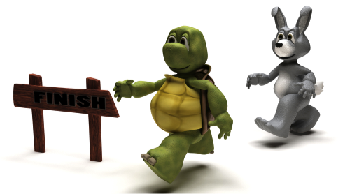Do You Run Your Sales Process Like The Tortoise Or Hare? - PNG Hare And Tortoise