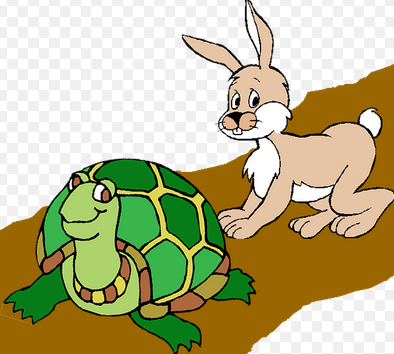 PNG Hare And Tortoise - 65780