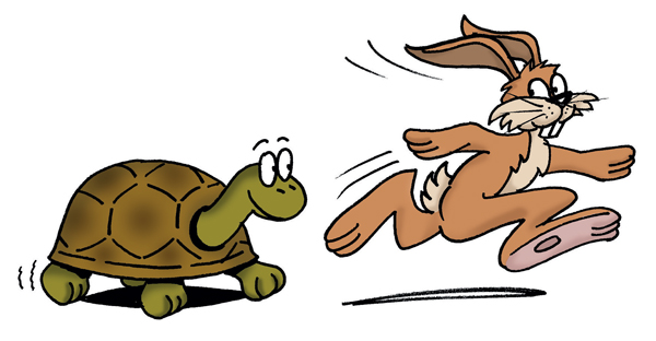 PNG Hare And Tortoise - 65786