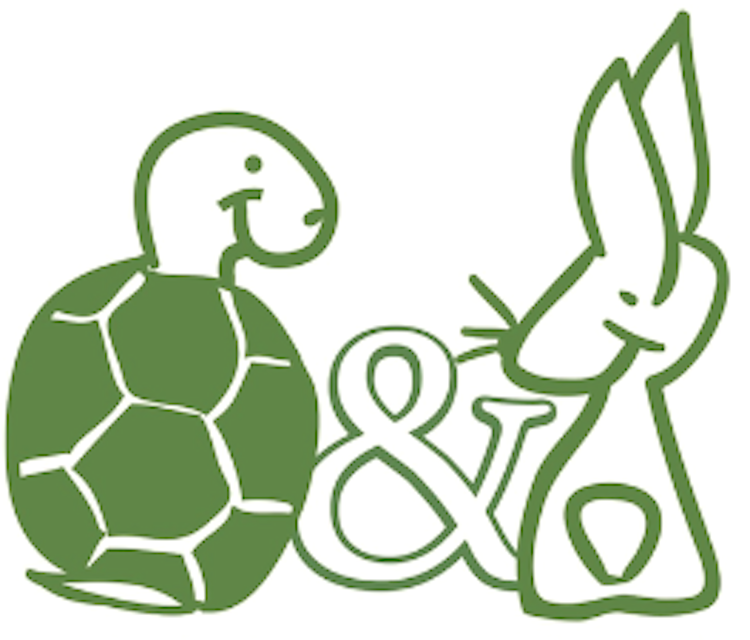 PNG Hare And Tortoise - 65787