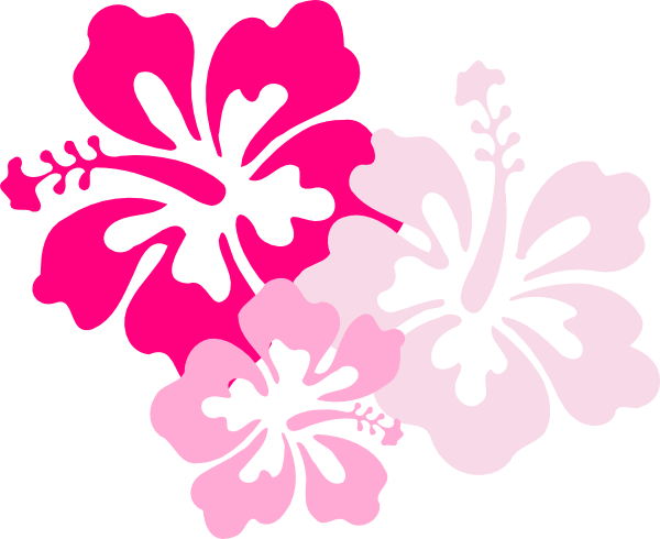 Clip Arts Related To : 12 Hawaiian Flower Icon.png Image - PNG Hawaiian Flower