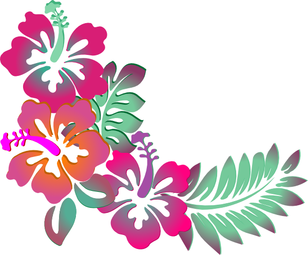 Colorful Floral Corner Borders Png Hibiscus corner clip art - PNG Hawaiian Flower
