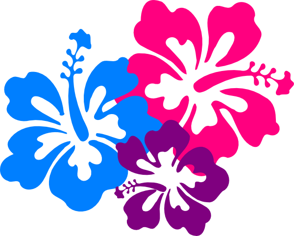 hawaiian flower border clip art - PNG Hawaiian Flower