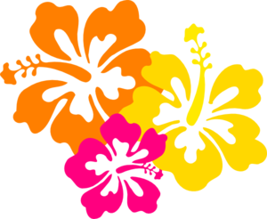 Hawaiian flower border clip art clipart collection - PNG Hawaiian Flower