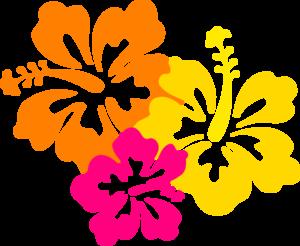 Hawaiian flower border clip art clipart collection - PNG Hawaiian Flower