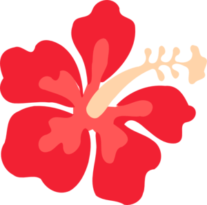 Hawaiian flowers clipart no background - PNG Hawaiian Flower