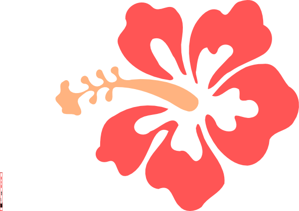 PNG: small · medium · large - PNG Hawaiian Flower