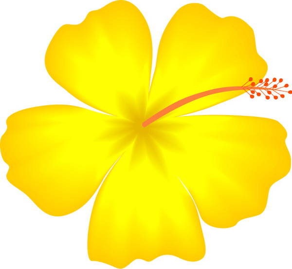 Yellow Hibiscus Hawaii State Flower | Free Images at Clker pluspng.com - vector  clip art online, royalty free u0026 public domain - PNG Hawaiian Flower