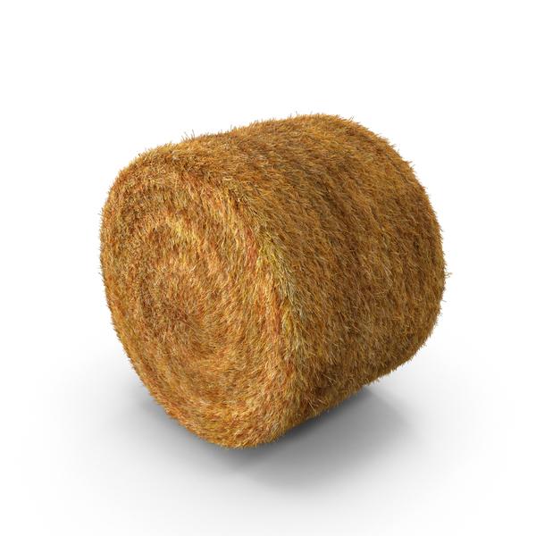PNG Hay