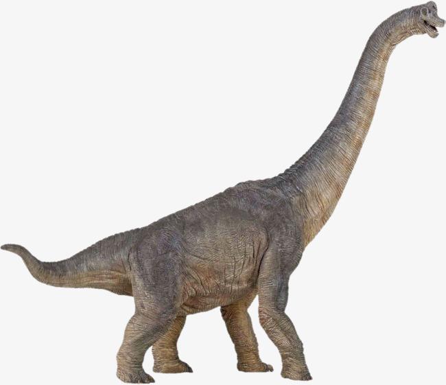 PNG HD Dinosaur - 151251