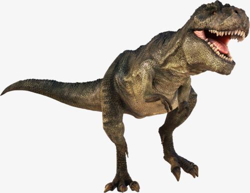 PNG HD Dinosaur - 151248