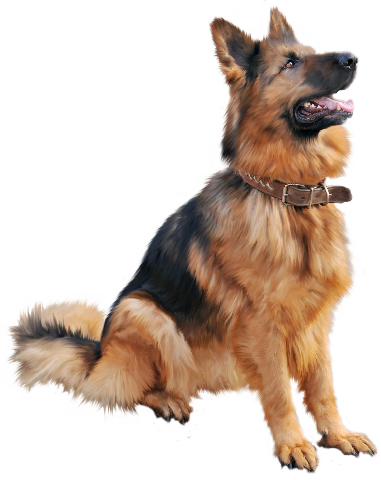PNG HD Dogs - 123352
