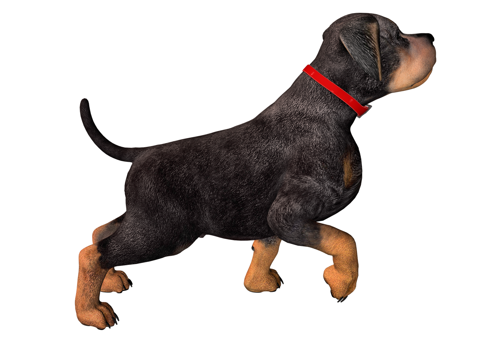 PNG HD Dogs - 123361