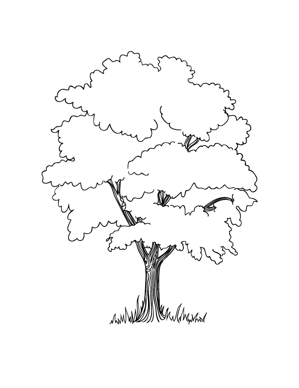 Coloring Pages - PNG HD Family Members