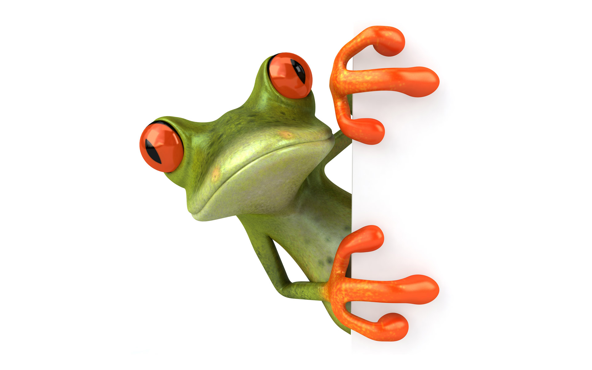Frog - PNG HD Frog