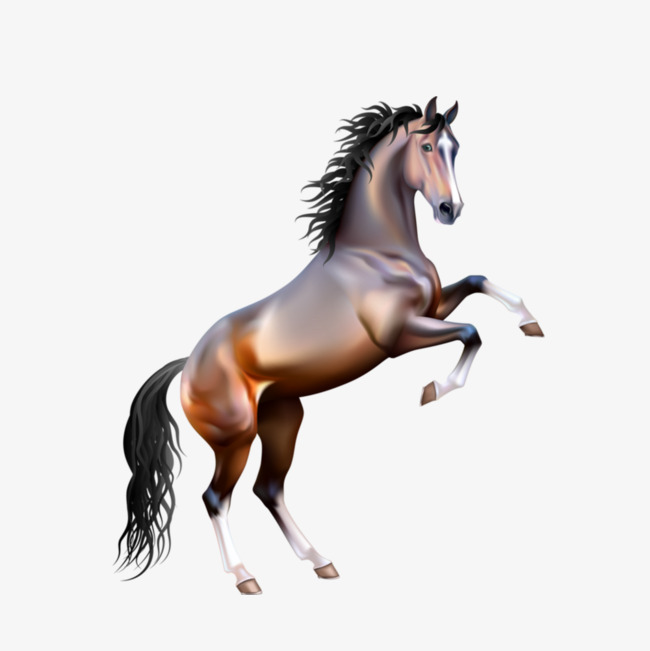 creative 3d horse, Png, Free Png, 3d PNG Image and Clipart - PNG HD Horse