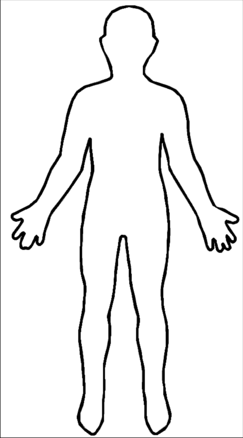 File:Outline-body.png - PNG Human Body Outline - PNG HD Human Body Outline