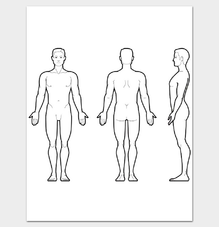 Human Body Outline Front and Back PDF - PNG HD Human Body Outline