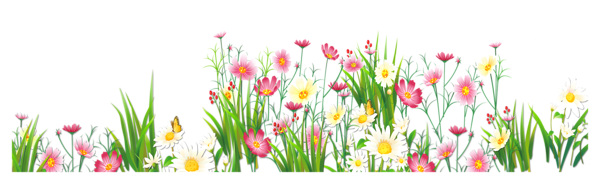 Butterfly clipart grass #3 - PNG HD Of Butterflies And Flowers