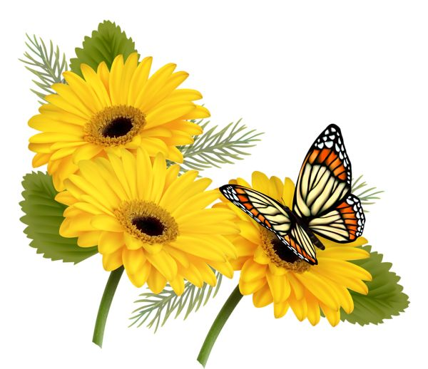 PNG HD Of Butterflies And Flowers - 123660