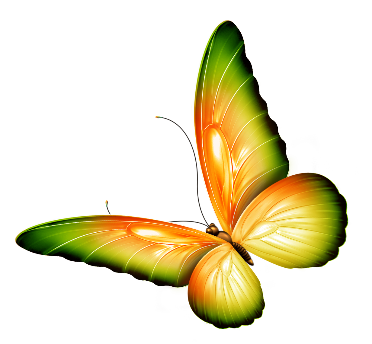 PNG HD Of Butterflies And Flowers - 123666