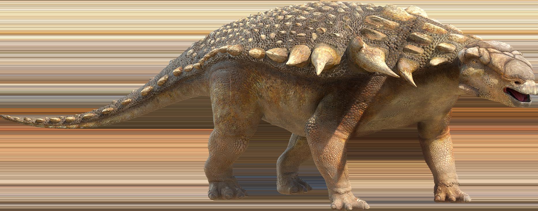 Ankylosaur.png - PNG HD Of Dinosaurs