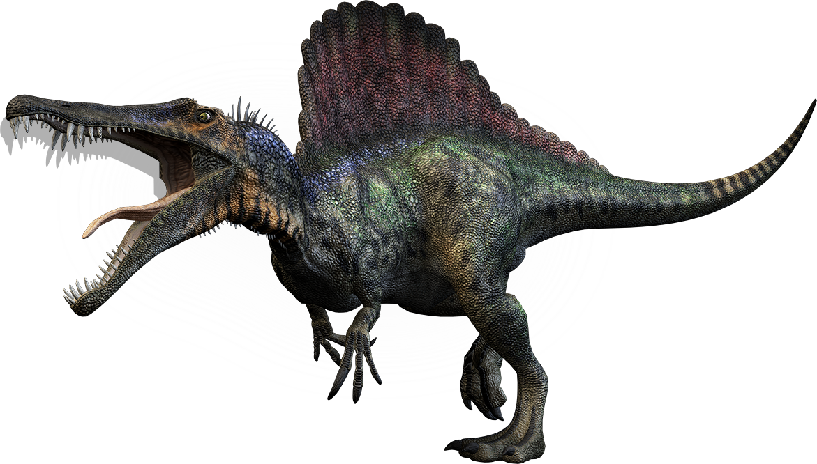 Dino-large spino.png - PNG HD Of Dinosaurs