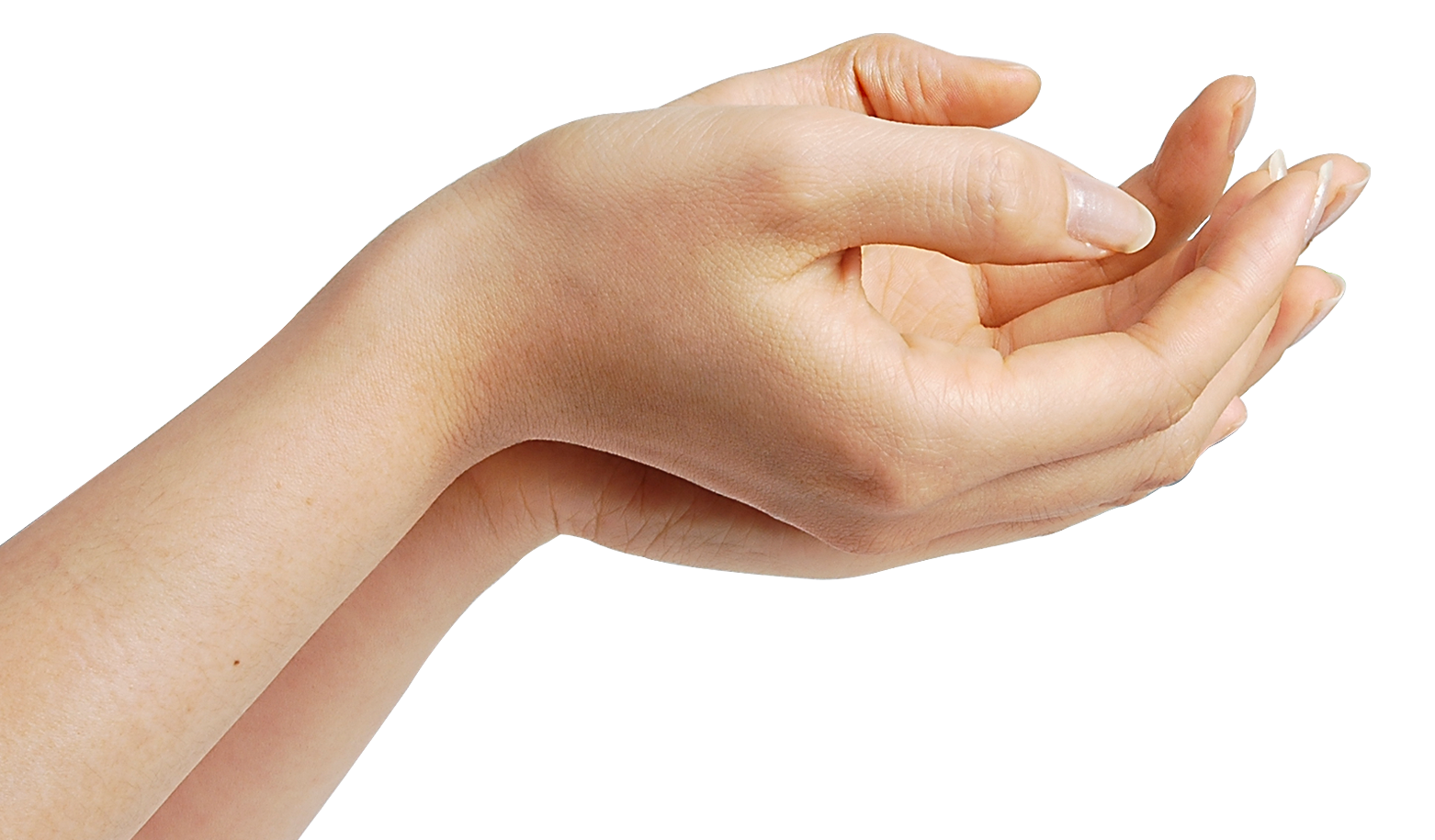 PNG HD Of Hands - 143257