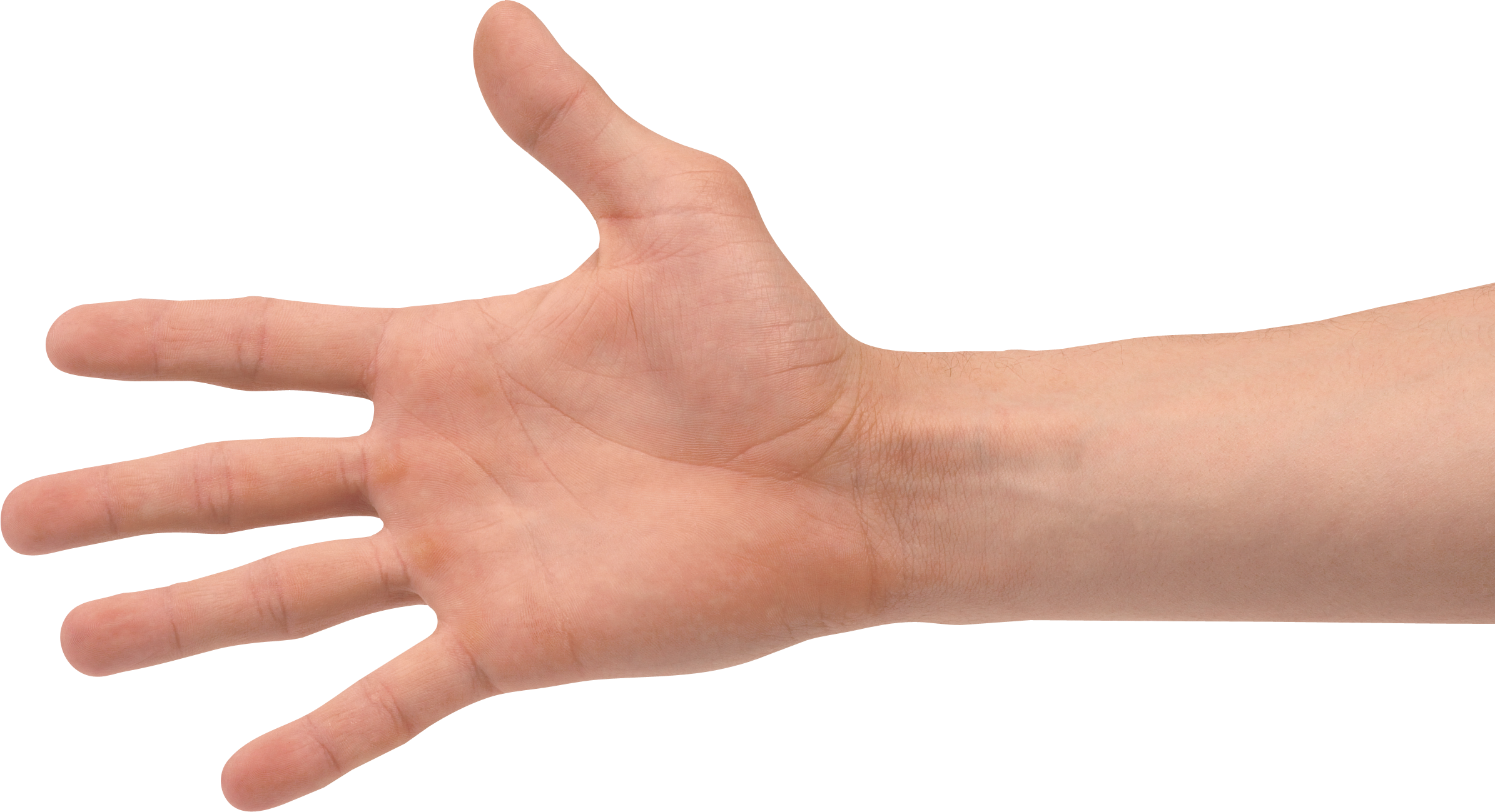 PNG HD Of Hands - 143261