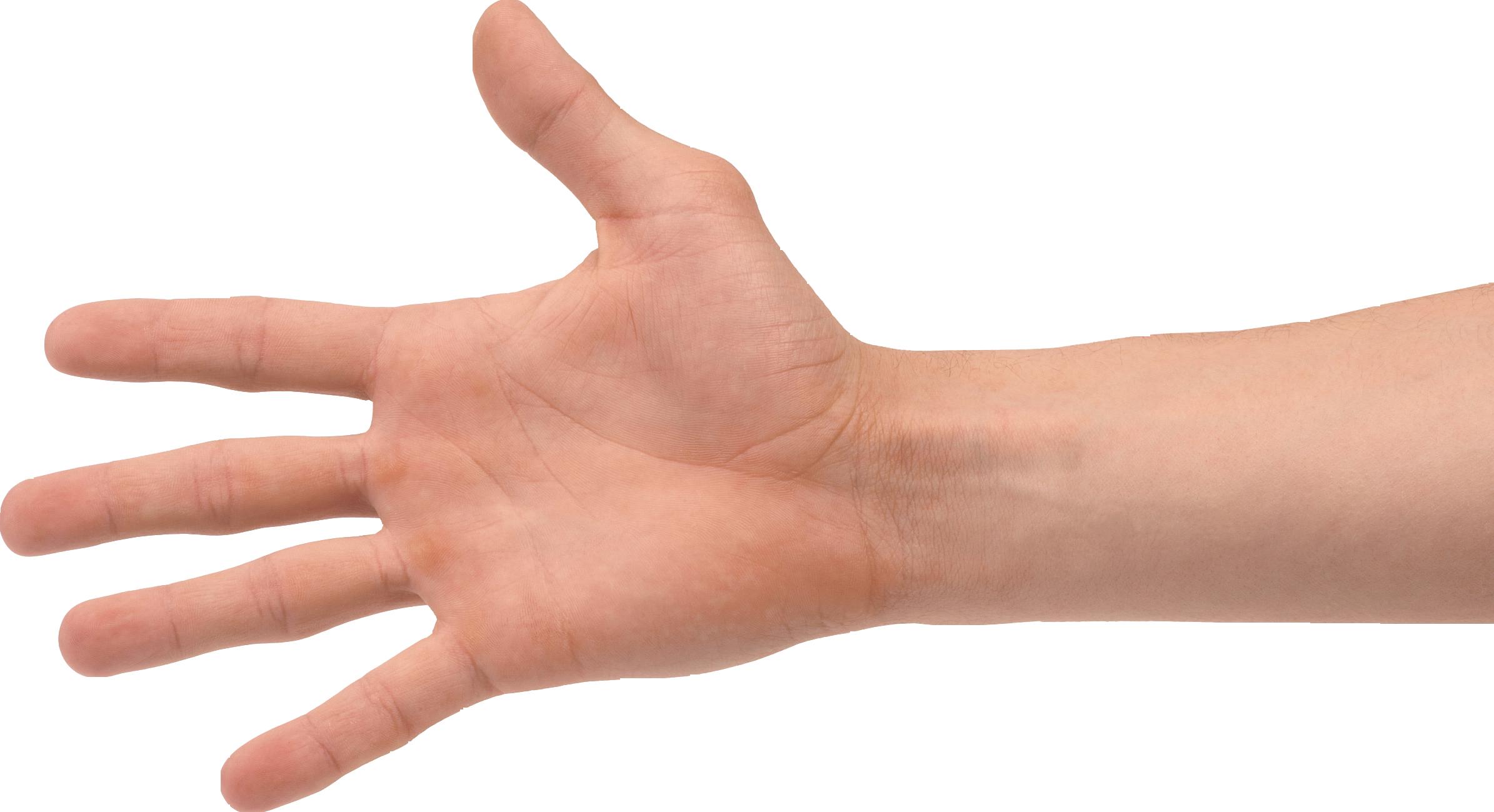 Hands PNG - PNG HD Of Hands