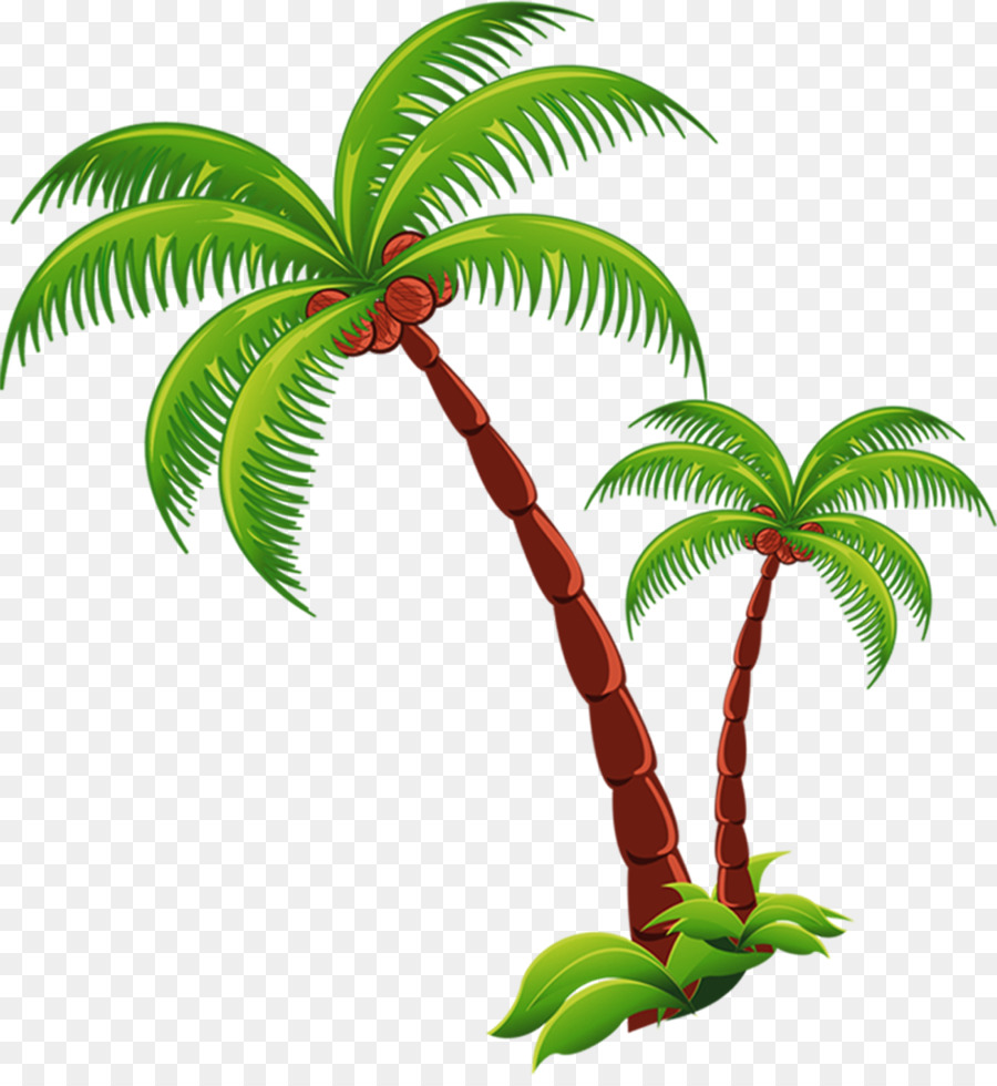 Coconut Beach Computer file - coconut tree - PNG HD Palm Tree Beach