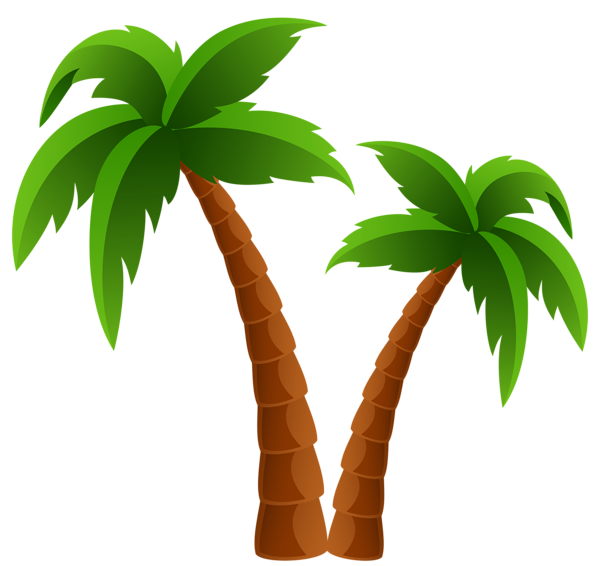 PNG HD Palm Tree Beach - 141597