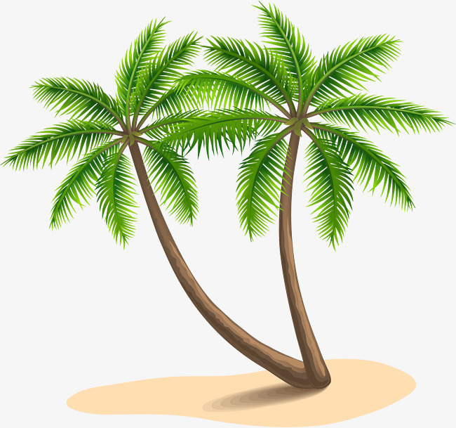 Island beach coconut trees, The Island, Beach, Coconut Trees PNG Image and  Clipart - PNG HD Palm Tree Beach