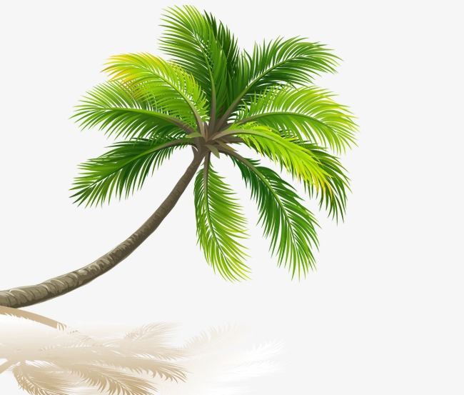 palm beach, Coco, Inverted Image, Sandy Beach PNG and PSD - PNG HD Palm Tree Beach