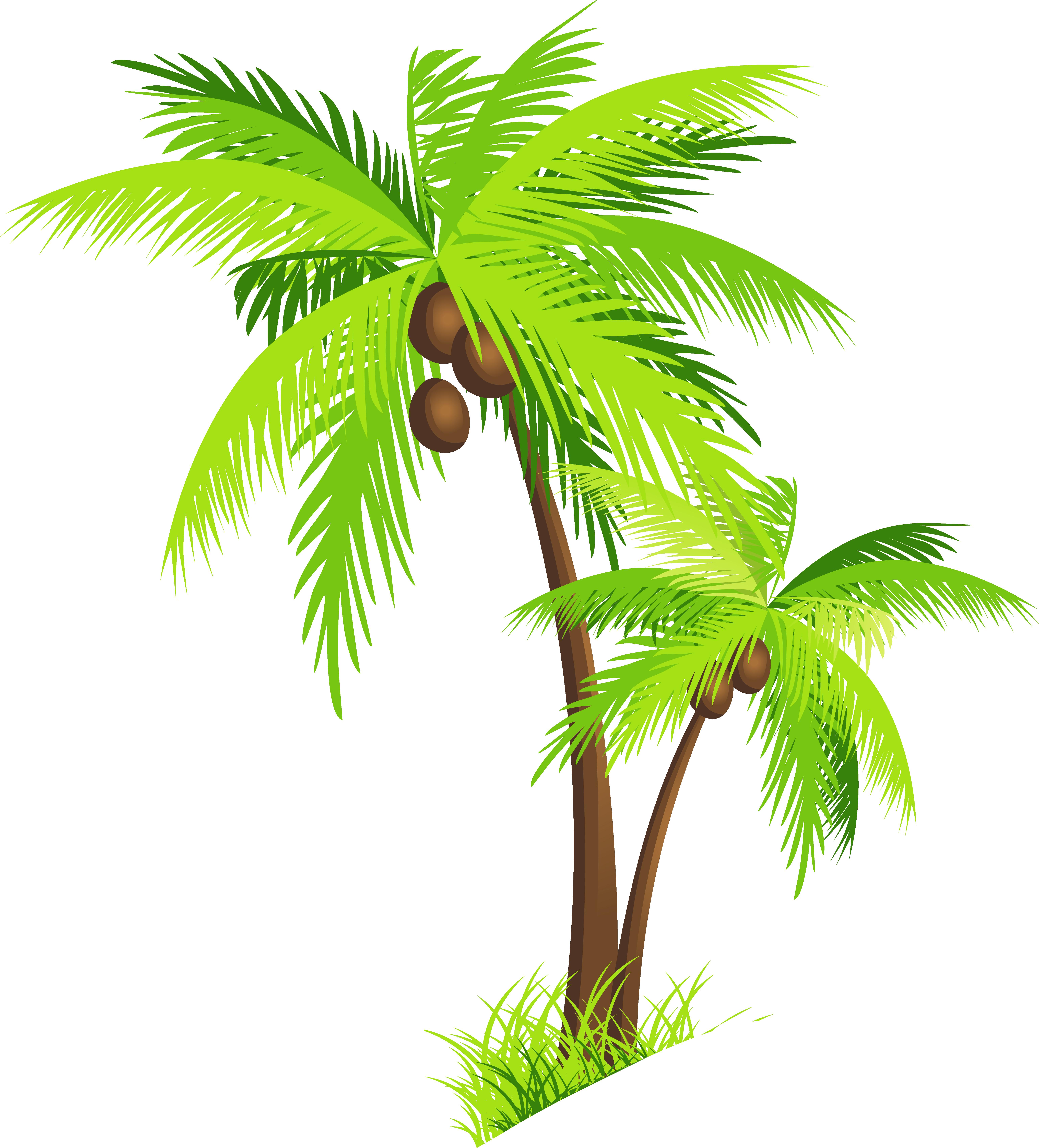 PNG HD Palm Tree Beach - 141581