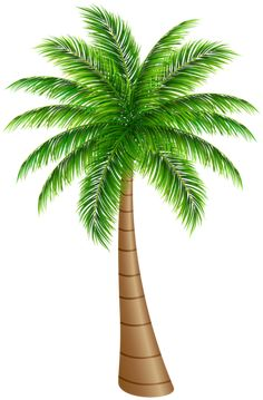 Palm Tree Large PNG Clip Art Image More - PNG HD Palm Tree Beach