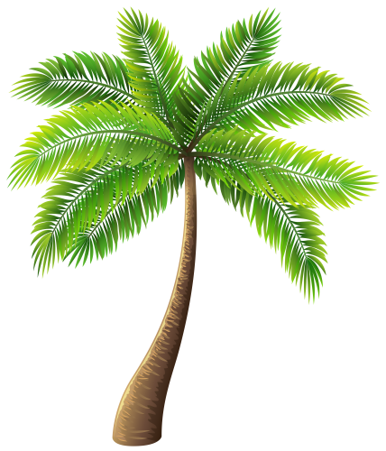 Palm Tree PNG Clip Art - PNG HD Palm Tree Beach