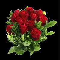 PNG HD Rose - 155195