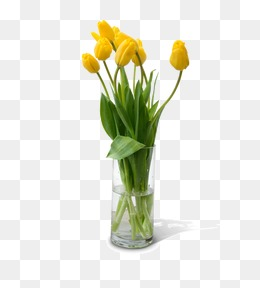 Flower, Tulip, Flower, Vase PNG And PSD - PNG HD Vase Of Flowers