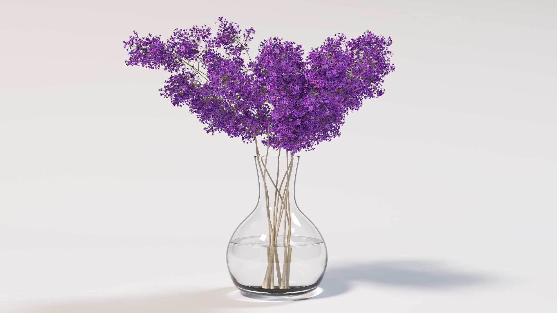 Note The Complex Caustics From The Vase - PNG HD Vase Of Flowers