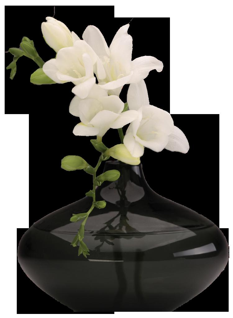 PNG HD Vase Of Flowers - 147210