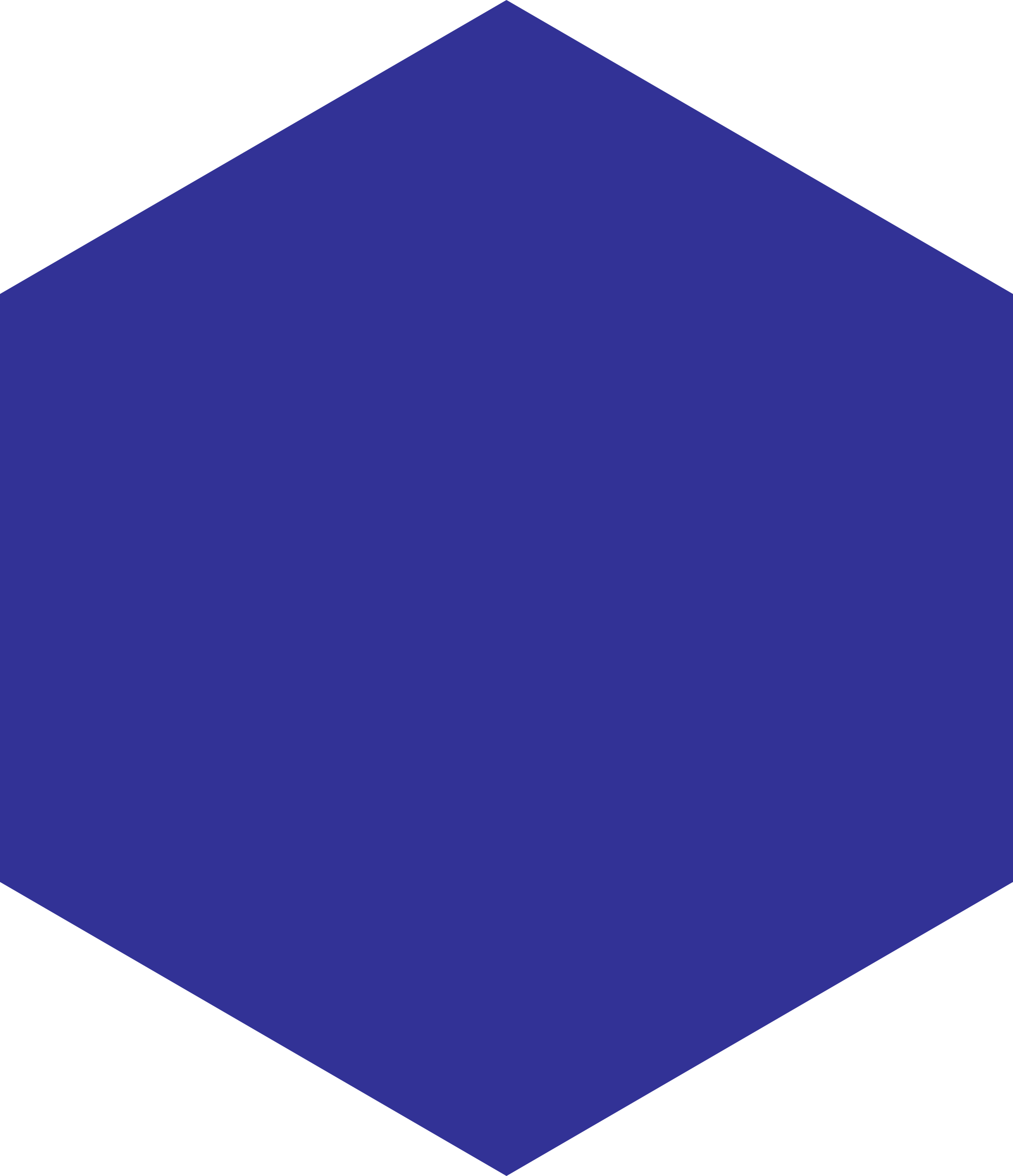 PNG Hexagon Shape - 53355