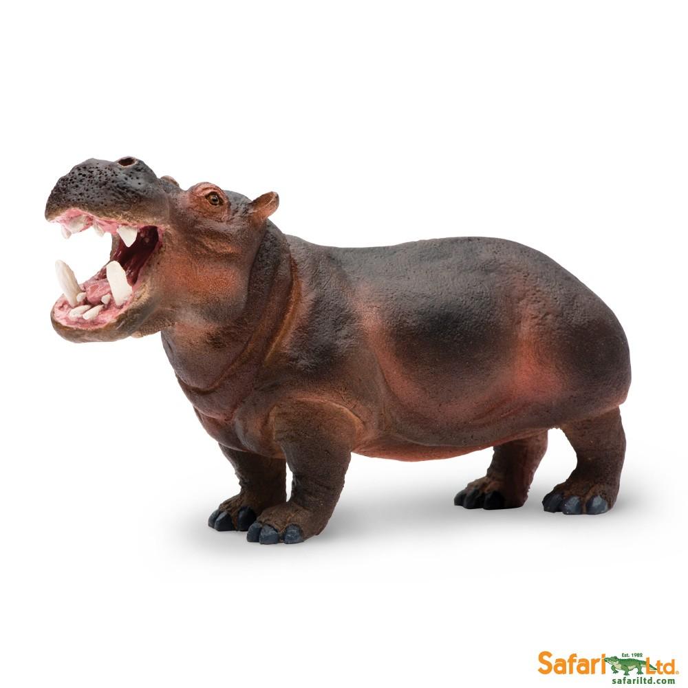 ce1d22b.png - PNG Hippopotamus