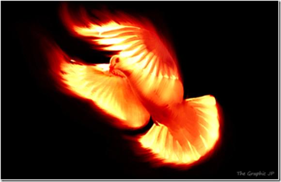 PNG Holy Spirit - 48452