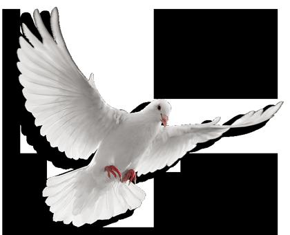 PNG Holy Spirit - 48446