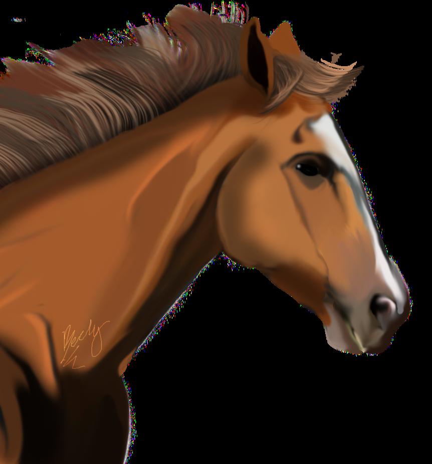 PNG Horse Head - 53290