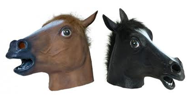 Everyday neigh PlusPng.com  - PNG Horse Head